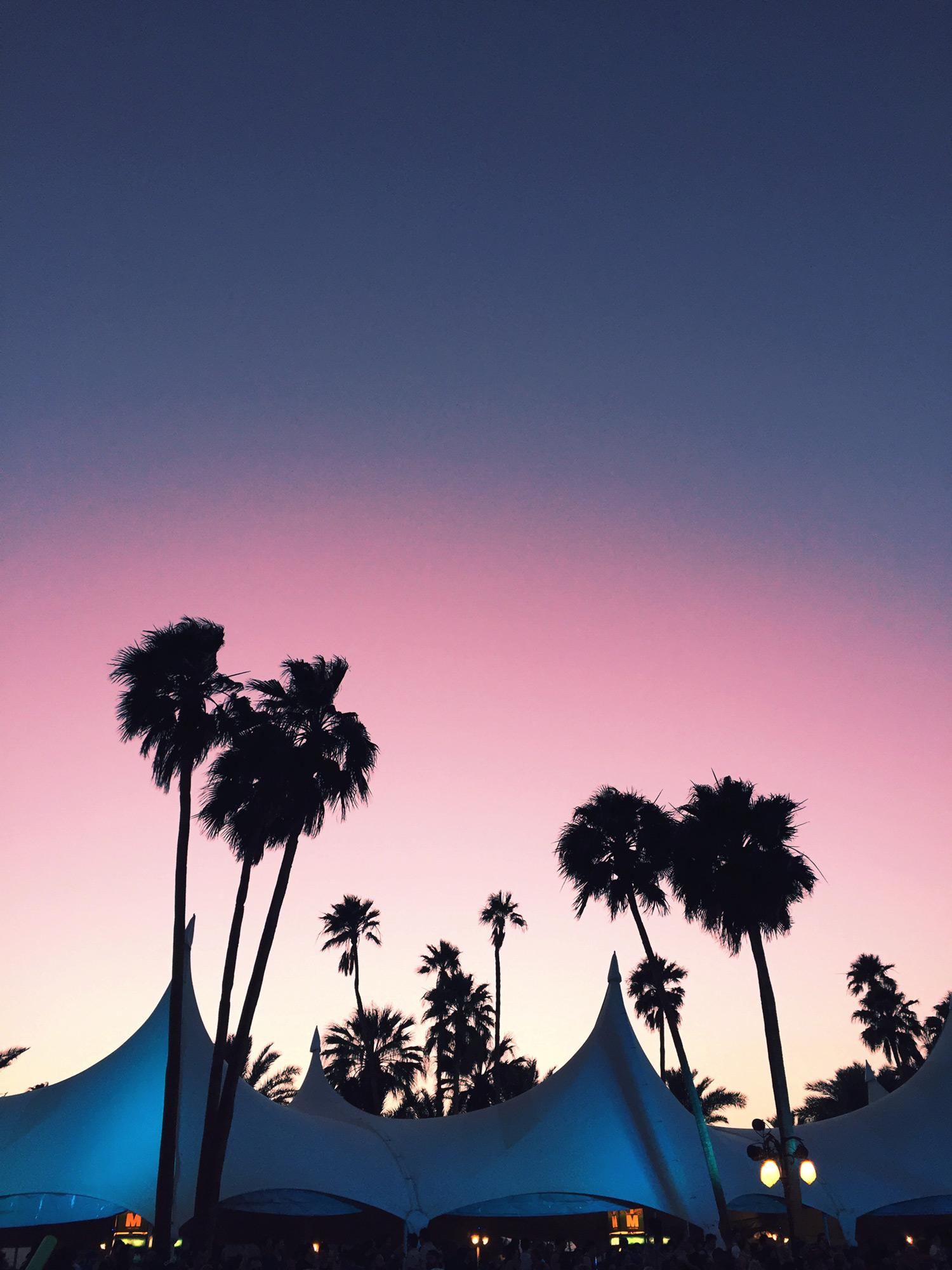 CoachellaLevis7