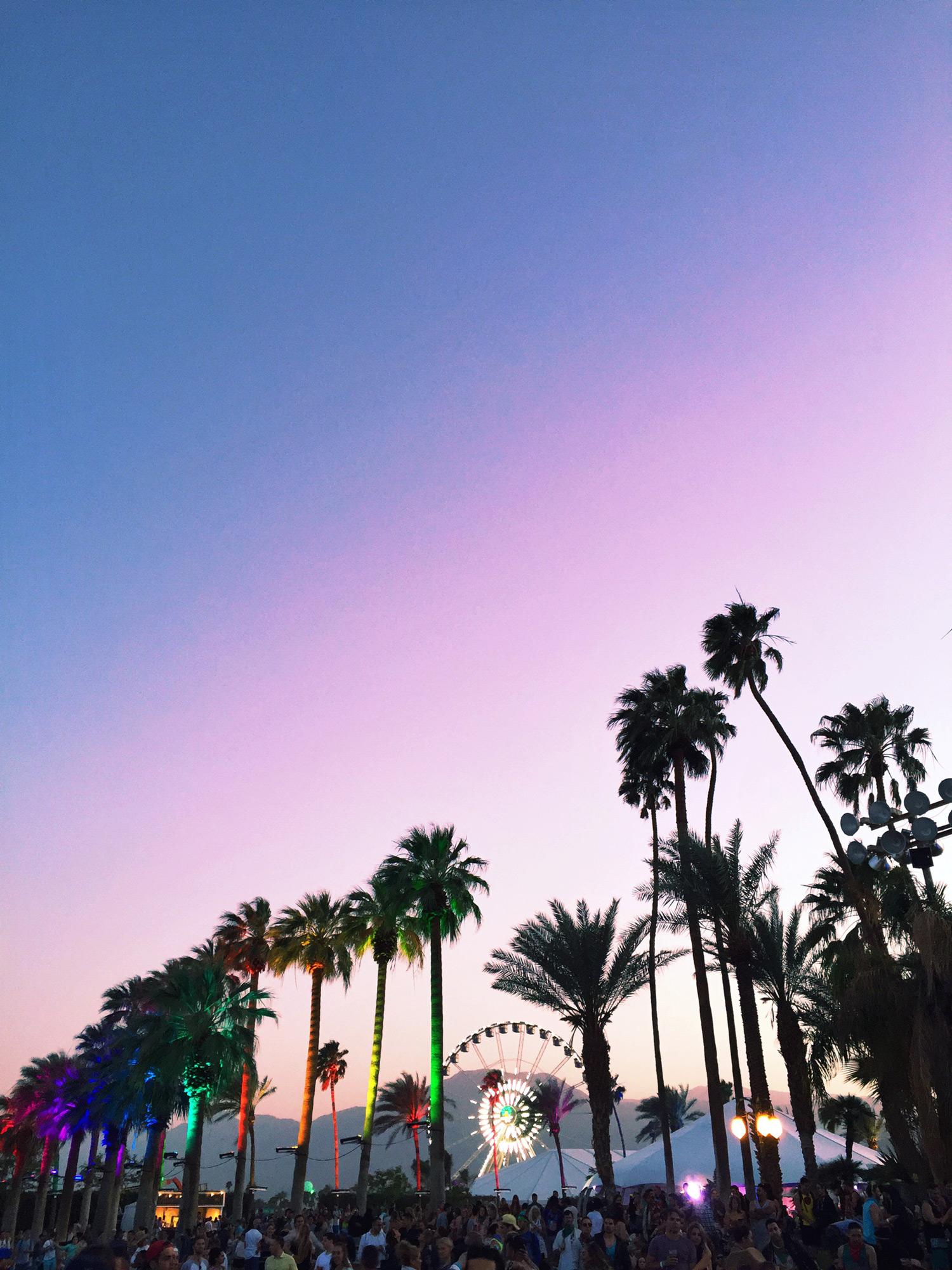 CoachellaLevis8